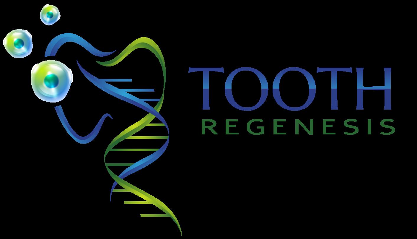 Tooth ReGenesis